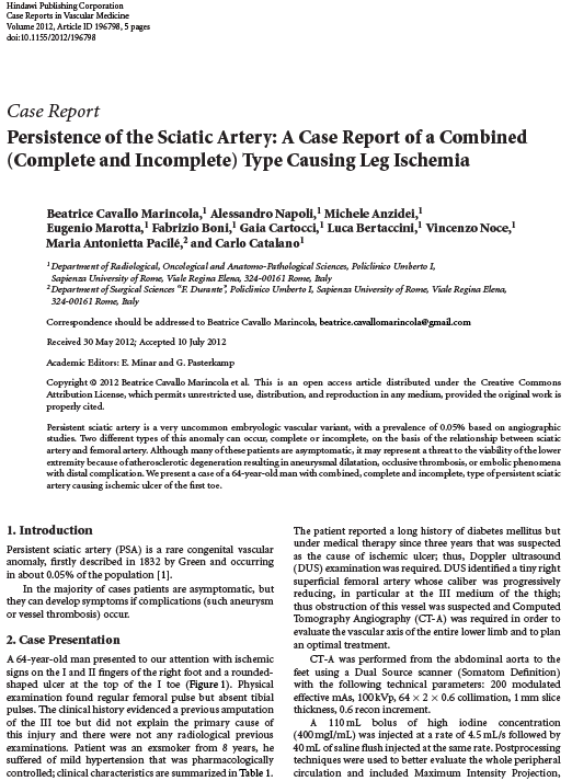Persistence of the Sciatic Artery: A Case Report of a Combined Type Causing Leg Ischemia